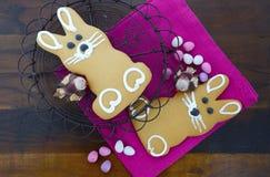 Cookies do pão-de-espécie do coelhinho da Páscoa Fotos de Stock