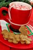 Cookies do pão do gengibre e chocolate quente Fotografia de Stock
