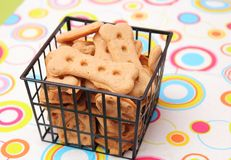 Cookies for Dogs Stock Photography
