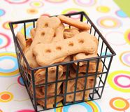 Cookies for Dogs Royalty Free Stock Image