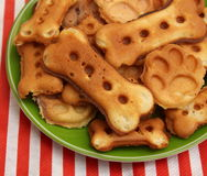 Cookies for Dogs Stock Photo