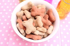 Cookies for Dogs. Some homemade cookies for Dogs with pork meat Stock Photo