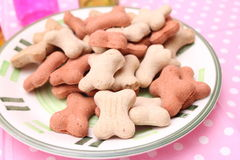 Cookies for Dogs. Some homemade cookies for Dogs with pork meat Royalty Free Stock Photography