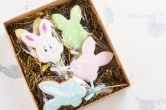 Cookies dos coelhinhos da Páscoa Fotografia de Stock Royalty Free