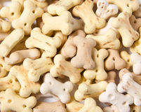 Cookies dos ossos dos biscoitos de cão Fotos de Stock Royalty Free