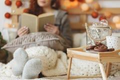 Cookies e chá do pão-de-espécie foto de stock royalty free
