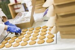 Cookies factory Stock Image