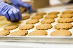 Cookies factory royalty free stock photos