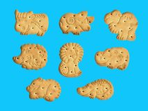 Cookies in the form of funny animals, good fun for children_ royalty free stock images