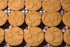 Cookies 9 Royalty Free Stock Photo