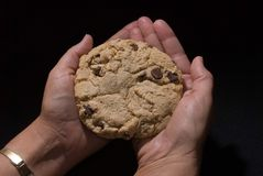 Cookies 7. Fresh home baked large chocolate chip cookie displayed in a woman's hands Stock Image