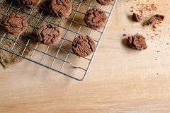 Cookies fresh from the oven. stock images