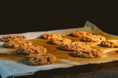 Cookies fresh from the oven. Homemade Cookies fresh from the oven royalty free stock photography