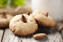 Cookies with a Jar of milk Stock Photography