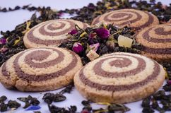 Cookies with a light and dark spiral with tea from flowers on a light background royalty free stock photo