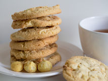 Cookies. Macadamia nut and white chocolate cookies Royalty Free Stock Image