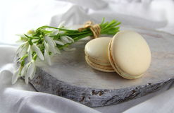 Cookies macaroon with white flowers stock photo