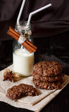 Cookies and milk. Royalty Free Stock Photo