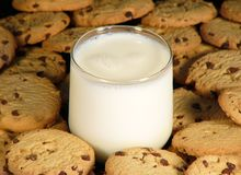 Cookies and milk. An ice cold glass of milk surrounded by a group of chocolate chip cookies Royalty Free Stock Photo