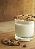 Cookies with milk Stock Image