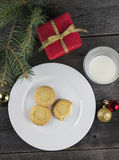 Cookies and milk for Santa Claus.  Stock Image