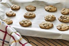 Cookies mornas dos pedaços de chocolate que refrigeram em uma folha de cookie Imagens de Stock