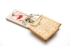 Cookies in the mousetrap Royalty Free Stock Photo