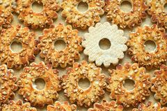 Cookies with nuts in the form of the gears for background. Close-up, top View royalty free stock photos