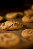 Cookies in the oven Stock Photography
