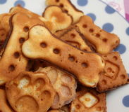 Cookies para cães Foto de Stock