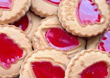 Cookies. Royalty Free Stock Photo