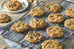 Cookies pegajosos caseiros de Smores Foto de Stock