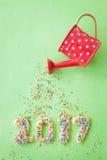 Cookies pelo ano novo 2017 Foto de Stock