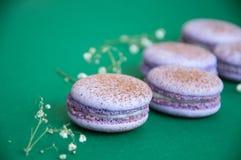 Cookies pequenas do macaron Fotos de Stock