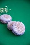 Cookies pequenas do macaron Foto de Stock Royalty Free