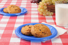 Cookies on a picnic table Royalty Free Stock Image