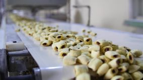 Cookies production line at a food factory.  royalty free stock images