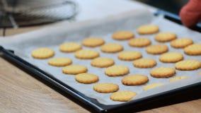 Cookies recentemente cozidas na bandeja vídeos de arquivo
