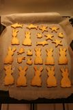 Cookies saborosos Fotografia de Stock Royalty Free