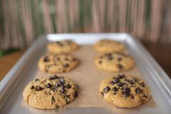 Cookies sem glúten com os ingredientes sem glúten na bandeja do serviço foto de stock