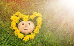 Cookies with smile symbol on a background of green grass in a wreath in the shape of a heart of dandelions in the Royalty Free Stock Image
