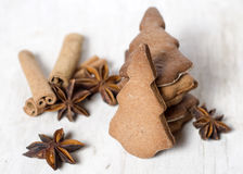 Cookies and spices Royalty Free Stock Images