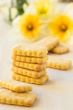 Cookies and spring flowers on white background Royalty Free Stock Images