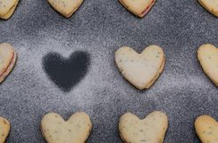 Cookies are sprinkled icing sugar, lie against a dark background.  royalty free stock photography