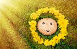 Cookies with symbol smiles on the background of green grass in wreath of dandelions in the sunlight. The horizontal Stock Image