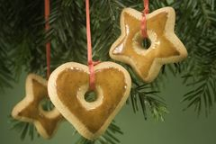 Cookies under tree Stock Photography