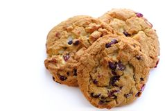 Cookies on white, chocolate and cranberries. Good quality photo of a few cookies. You may see closely three quite big delicious cereal cookies with white Royalty Free Stock Photography
