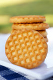 Cookies on white plate. On a green background Stock Photos