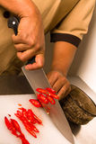 Cooking. Chief choped the chilli pepper Royalty Free Stock Photos