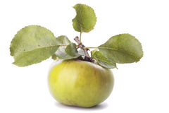 Cooking apple Royalty Free Stock Images